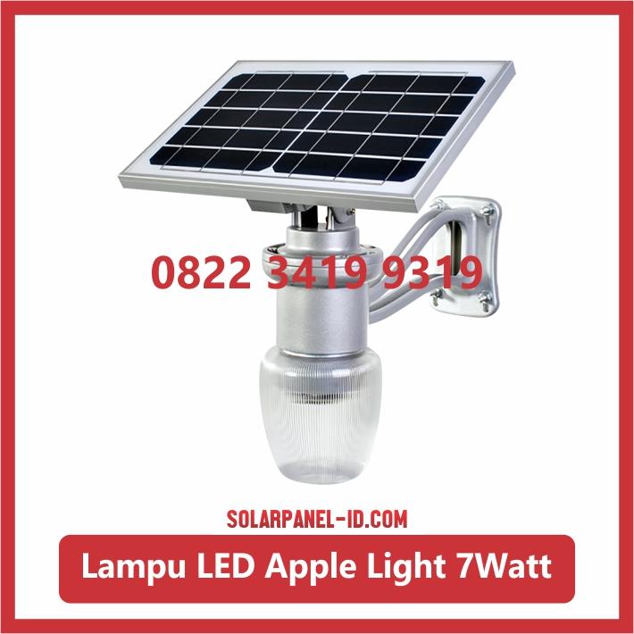Jual Lampu Taman Tenaga Surya Apple Light 7watt Solarpanel Id