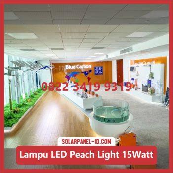 Lampu Taman Tenaga Surya Murah Peach Light 15watt