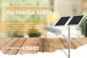 Distributor Lampu Jalan Solar Cell Satu Set di Manokwari Papua Barat